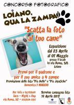 """""""Scatta la foto al tuo cane"""", dal 23 aprile Concorso delle foto più belle e simpatiche"""