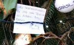 """""""Caro speranzalbero, non far aprire nuove cave e non far tagliare il bosco"""". Inizia la campagna di informazione dei contrari al Piano  approvato dal Comune"""