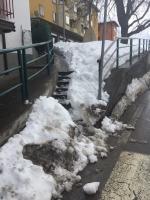 Ingombri di neve gli scalini sotto l'alberone