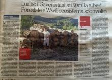 Nuovo esposto del WWF per il taglio degli alberi del lungo Savena
