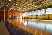 La società Futa 65 si rende disponibile per gestire il Palazzetto dello Sport