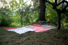 """Venerdì 13 luglio """"Meditazione della Grande Quercia"""" al Farnè di Scascoli"""